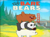We Bear Bears Memory
