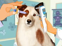 Dog with a Blog Eye Care