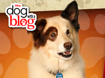Dog With a Blog - Stan's Sneaky Blog