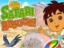 Diego in Safari