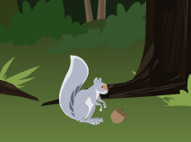 Wild Kratts and the Grey Squirel