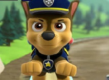 Chase Paw Patrol Differences