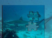 Shark Puzzle