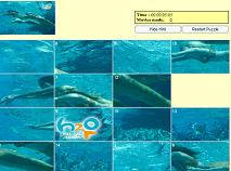 Puzzle cu Sirenele H2O