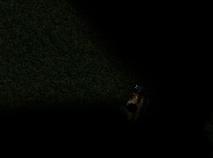 Slender Man in Padure