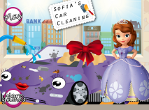 Sofia's Car Cleaning