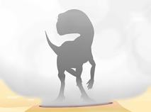 Trenul Dinozaurilor Ghiceste Dinozaurii