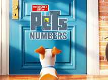 The Secret Life of Pets Hidden Numbers