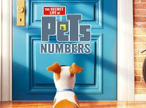 Viata Secreta a Animalelor de Companie Numere Ascunse