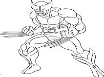 Wolverine de Colorat