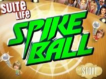 Zack and Cody Spike Ball